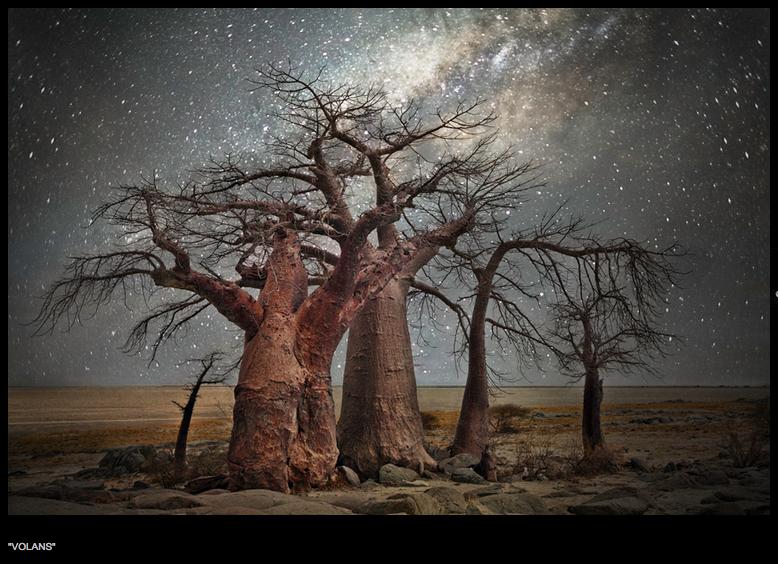 Beth Moon, baobab, Botswana