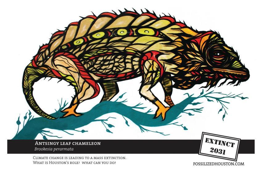 Chameleon - Fossilized in Houston