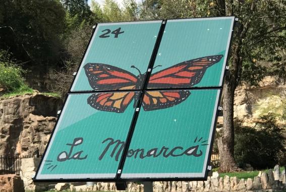 LAGI, solar, Texas, San Antonio, Cruz Ortiz, renewable, solar panel, Monarch, butterfly, La Monarca